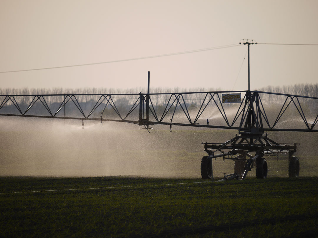 collmart-gallery-irrigation1