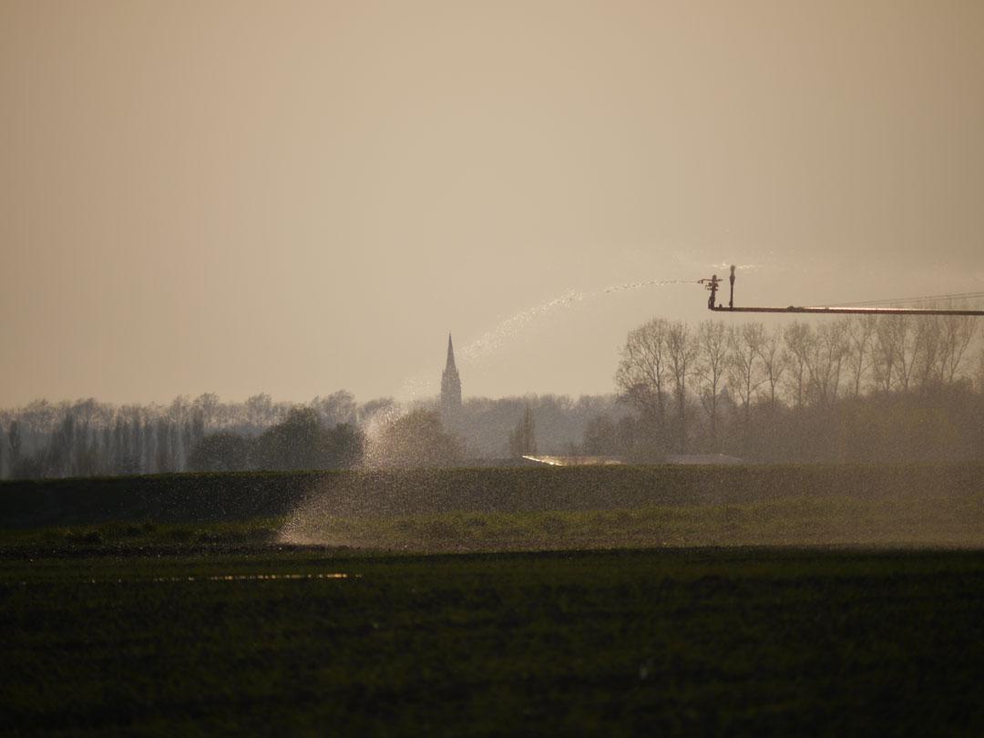 collmart-gallery-irrigation4